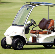Golfbilsbatterier Golfvagnsbatterier