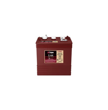 TROJAN T-125 Deep-cycle batteri 6V 240Ah